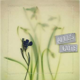 """Blumentransparent Karte """"Alles Gute"""""""