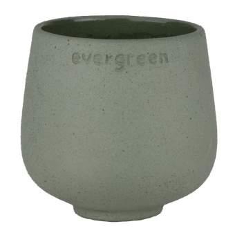 """Blumenfreund """"Evergreen"""""""